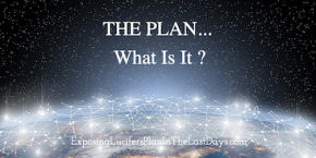 The Plan Network small